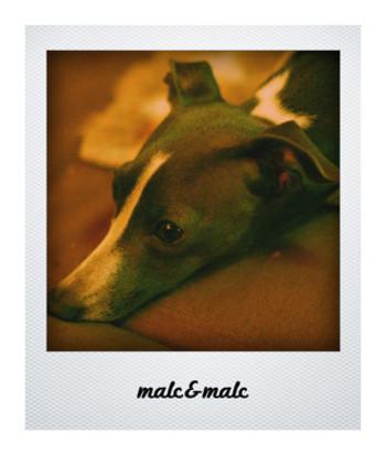 Malc_2